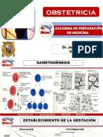 OBSTETRICIA I.pdf