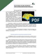 Yacimientos Naturalmente Fracturados IMP[1]