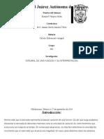 D01 Integral de Una Funcion y Su Interpretacion.