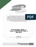 RM Bis.pdf
