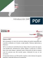 Introducción SAP y Módulo MM