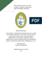 EVALUACIÓN DE LA PRODUCCIÓN DEL HONGO Pleurotus ostreatus SOBRE CINCO TIPOS DE SUSTRATOS (TAMO DE TRIGO, TAMO DE CEBADA, TAMO DE VICIA, TAMO DE AVENA Y PAJA DE PÁRAMO); ENRIQUECIDOS CON TUZA MOLIDA, AFRECHO DE CEBADA Y CARBONATO DE CALCIO EN LA PROVINCIA NOR YUNGAS, MUNICIPIO DE COROICO, COMUNIDAD DE CARMEN PAMPA, EN PREDIOS DE LA UAC-CP.