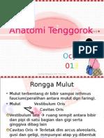 95794294-Anatomi-Tenggorok.ppt