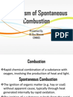 Mechanism of Spontaneous Combustion