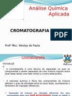 Analise Química Aplicada (Cromatografia Gasosa)