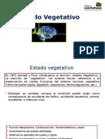 Estado Vegetativo