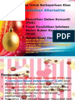15. Pendidikan Alternative PDK NGO TSH
