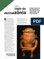 Arqueologia da amazonia