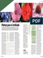 Artículo 55.pdf