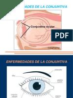 Clase de Conjuntiva 2015 (Verdier)