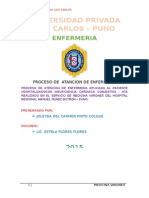 PAE HOSPITALIZACIO.docx
