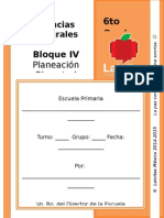 6to Grado - Bloque 4 - Ciencias Naturales.doc