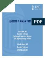 Updates in ANCA_2014