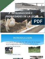 Caracterizacion de La Leche