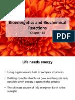 Bioenergetics and Biochemical Reactions