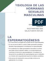 fisiologia de las hormonas masculinas .pptx