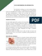 Protocolo de Apendice Sandra