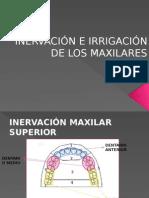 Inervación e Irrigación de Los Maxilares