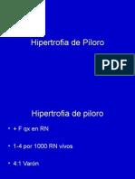H.PILORO