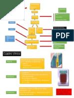 Fisiopatología Sx Nefritico