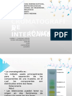 Expo Cromatografia Intercambio Ionico