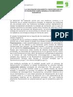 practica-5_Fluoresc_24062015 (1)