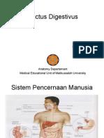 Tractus Digestivus PP