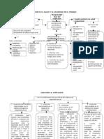 Mapas Conceptuales Salud Ocupacional