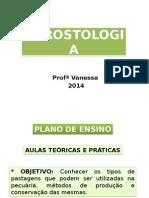 Aula 1 - Agrostologia