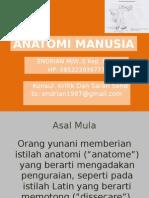 ANATOMI MANUSIA.pptx