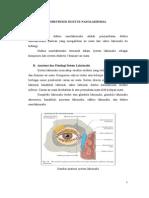 89605253-obstruksi-duktus-nasolakrimalis.doc