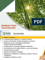 Calefacciyn_con_Biomasa_09_02_2012_1