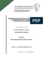 Monografías de plantas utilizadas como anticancerígenas en la medicina tradicional de Hidalgo, México