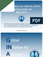 GINA Slides 2014 Partial