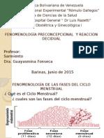 FENOMENOLOGÍA PRECONCEPCIONAL  Y REACCION DECIDUAL.pptx