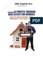 Making Profits Through Real Estate for Newbies(3)