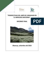 140507006-Estudio-de-Mercado-Anis.pdf