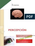 90692495-Percepcion