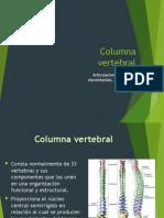 Columna vertebral.pptx