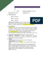 Historia Clinica Examen Fisico}
