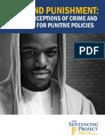 black on black crime report.pdf