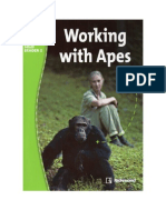 Working With Apes