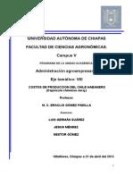 Impresion-costos de Produccion Chile