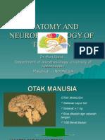 Anatomi Dan Fisiologi Otak_dr.ramli