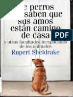 Sheldrake Rupert de Perros Que Saben Que Sus Amos Estan Camino de Casa