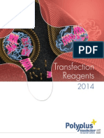 PP TransfectionReagentsBrochureE2014