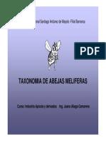 Taxonomia de La Abeja Melifera