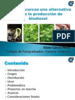 Colegio_de_Posgraduados.pdf