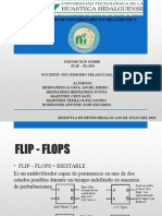 Exposicion Flip Flops