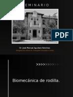 biomecanica de rodilla 2.ppt